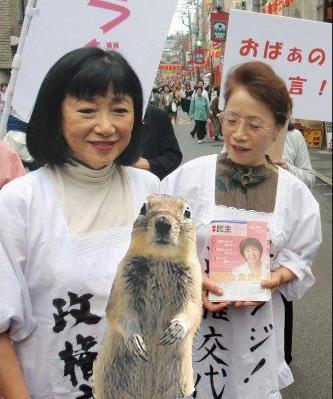 CrasherSquirrelMrsHatoyama